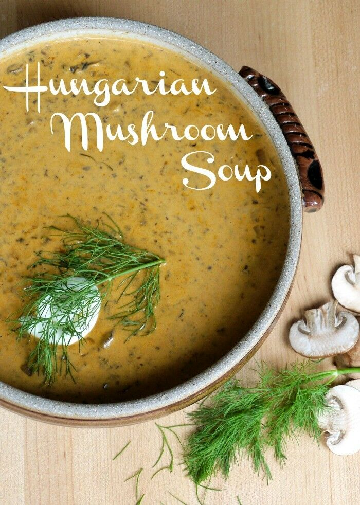 Hungarian Mushroom Soup | The Good Hearted Woman