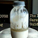 The Lazy Caretaker's Guide to Sourdough | The Good Hearted Woman