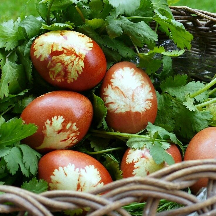 Naturally Dyed Armenian Easter Eggs | The Good Hearted Woman