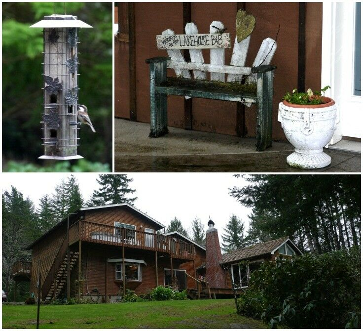 Backyard - The Lake House Bed & Breakfast, Lincoln City, Oregon | The Good Hearted Woman