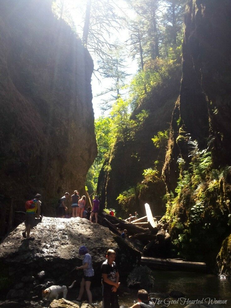 Oneonta Gorge Hike {9 Essential Tips} | The Good Hearted Woman