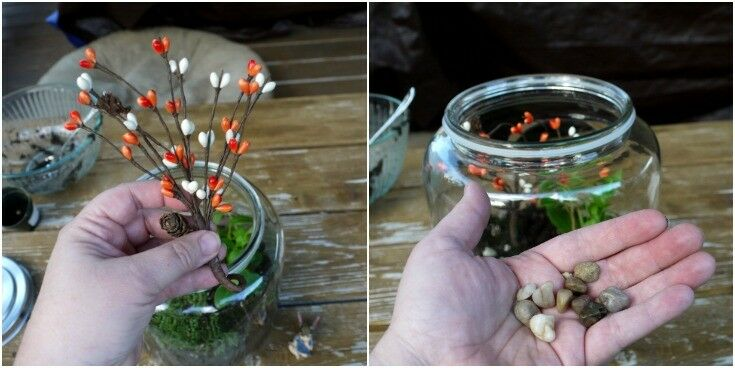 Changing Seasons Fairy Garden Terrarium | The Good Hearted Woman