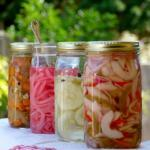 Quick Refrigerator Pickle Recipes | The Good Hearted Woman