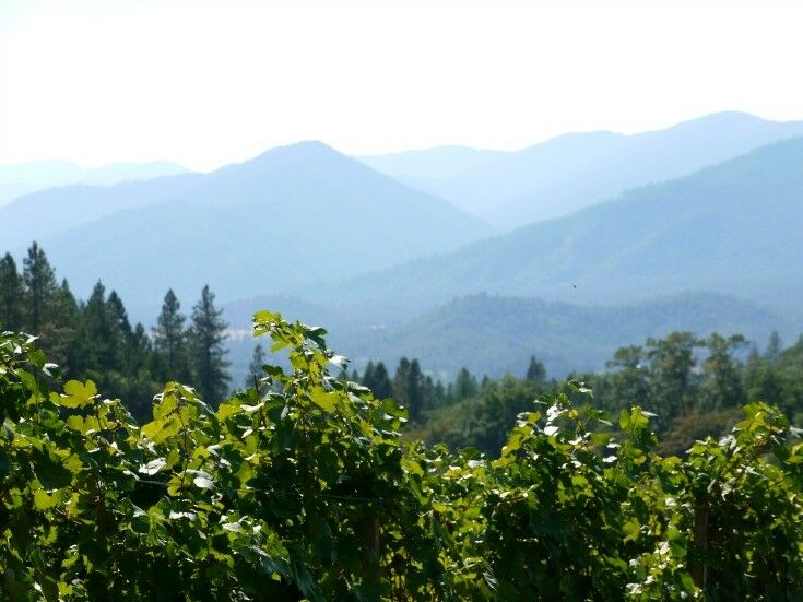 Wooldridge Creek Winery, Southern Oregon Travel | The Good Hearted Woman