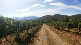 Four Scenic Stops on the Applegate Valley Wine Trail