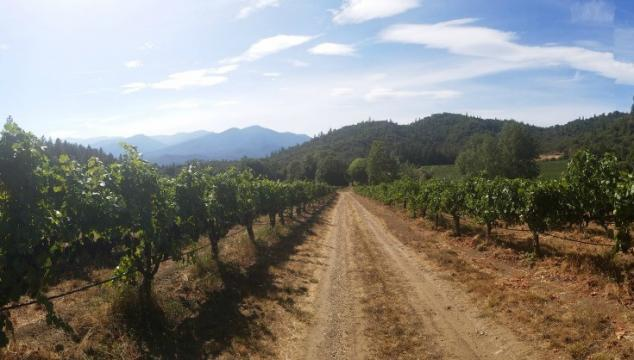 Four Scenic Stops on the Applegate Valley Wine Trail {Southern Oregon}