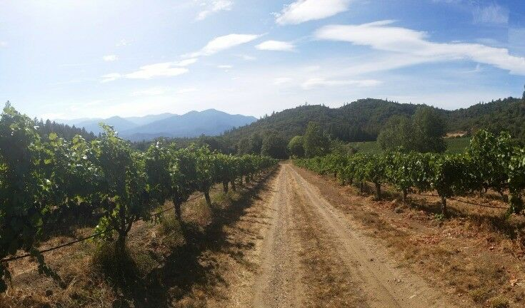 Wooldridge Creek Winery, Applegate Valley Wine Trail, Southern Oregon Travel | The Good Hearted Woman