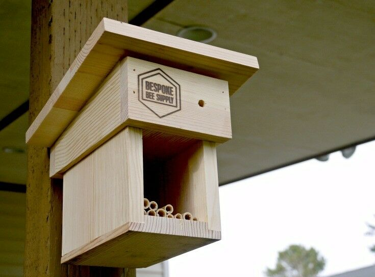 Mason Bee Cottage - Raising Mason Bees {Photo Credit: BeSpoke Bee Supply} | The Good Hearted Woman