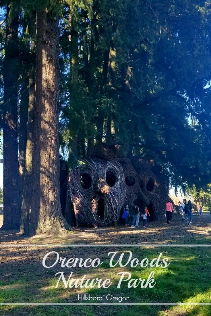 Orenco Woods Nature Park {Hillsboro, Oregon} | The Good Hearted Woman