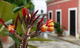 One Day in Old San Juan {Puerto Rico}